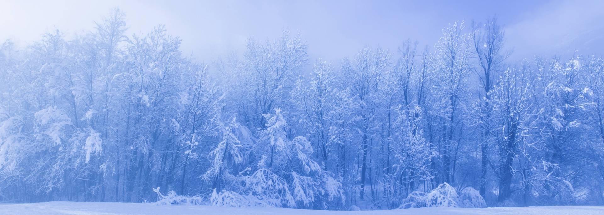 Paysage hiver La Vallouise