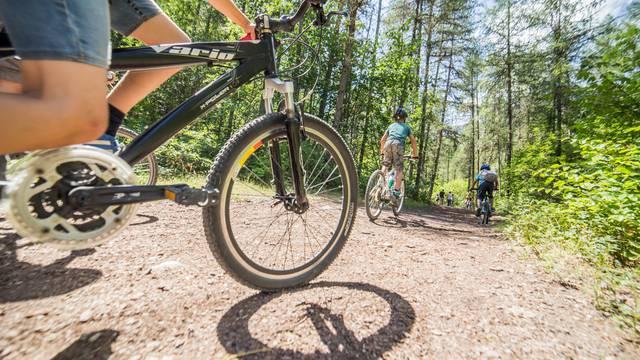 Bike park Puy Saint Vincent