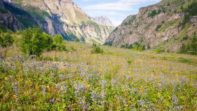 Parc National des Ecrins, un des espace les plus préservés de France