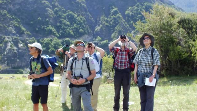 Un séminaire d'ornithologie dans le Pays des Écrins