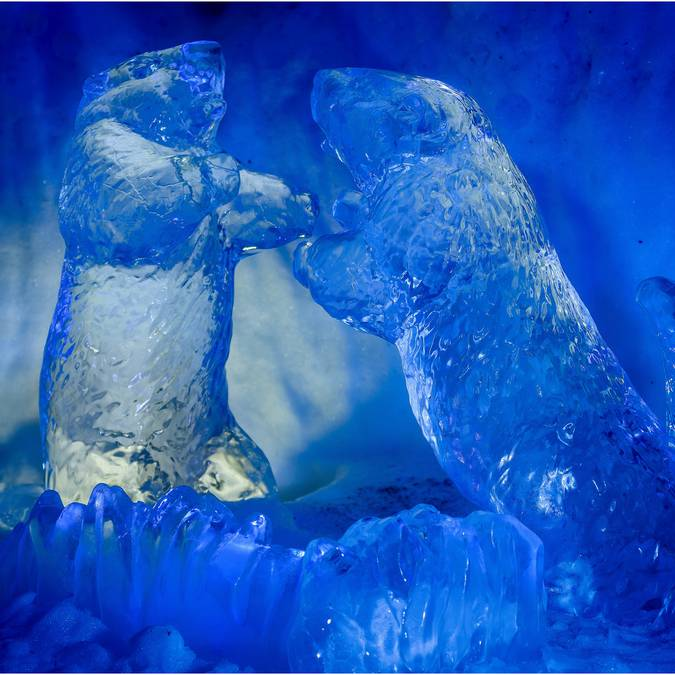 Sculptures sur glace Igloo Pelvoo