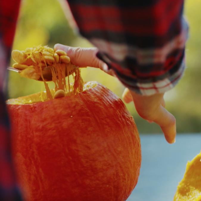 L'automne et Halloween au Pays des Écrins